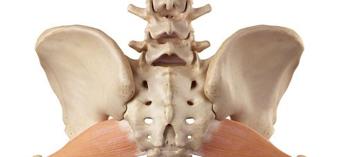 How Students in Massage Courses Can Treat Piriformis Syndrome